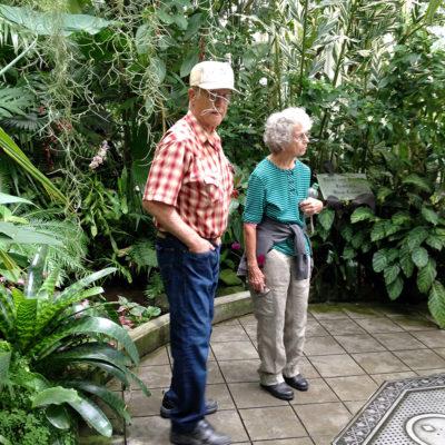 San Francisco Botanical Gardens